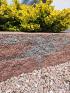 Splitrock XL 15x15x60 cm bruin/zwart